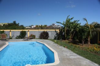 Our swimming pool and garden